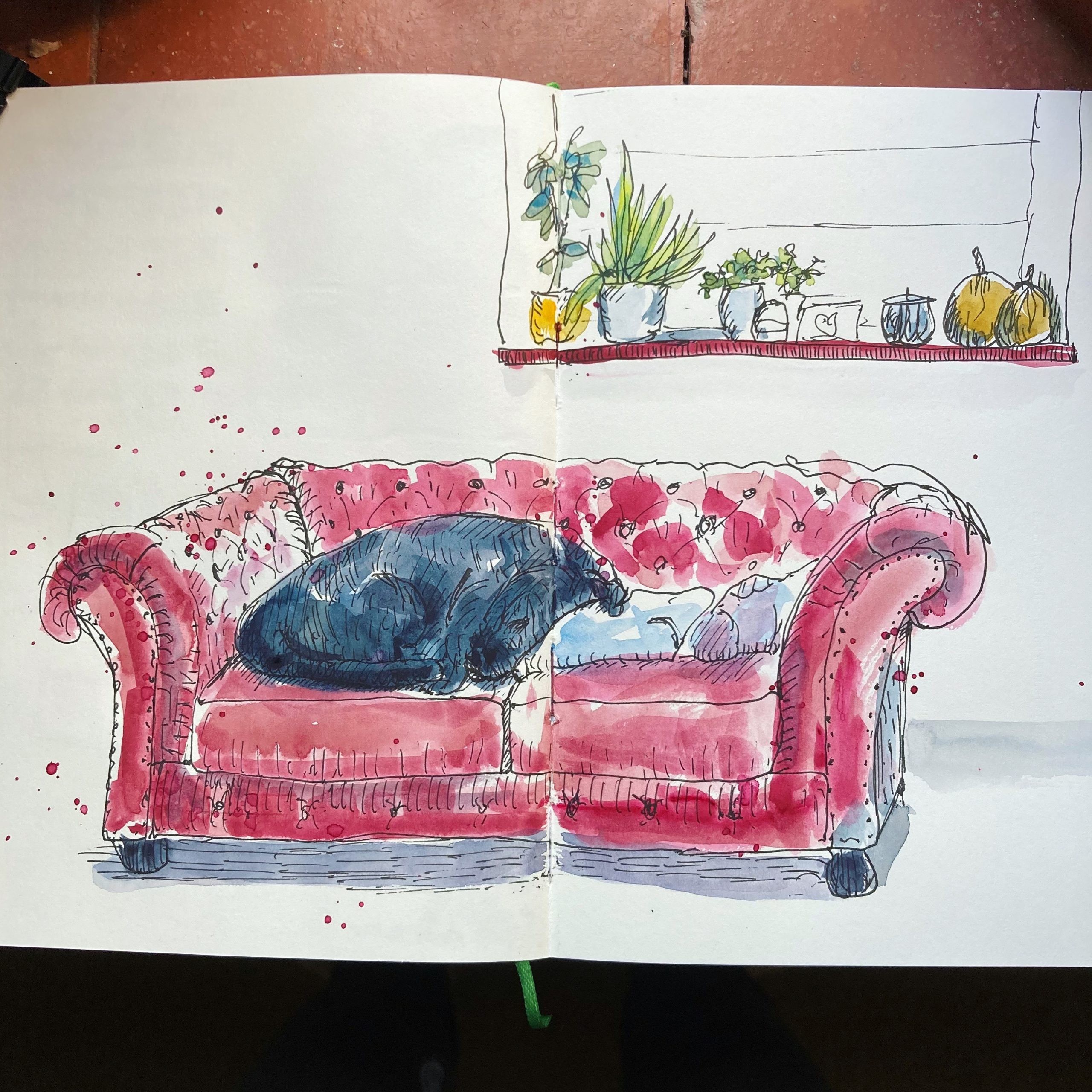Morning Sketch of Ruby